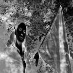 The Phantom Hive by DasGhul
