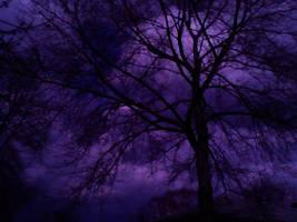 Stormy Days by MiniCupcake