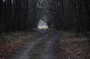 Fairy-Tale Road 2 by Kurai-no-Manazashi