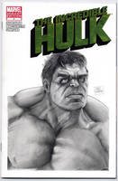 Hulk blank cover by kris-knave