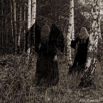 Darkness walks beside me... by Finsternisss
