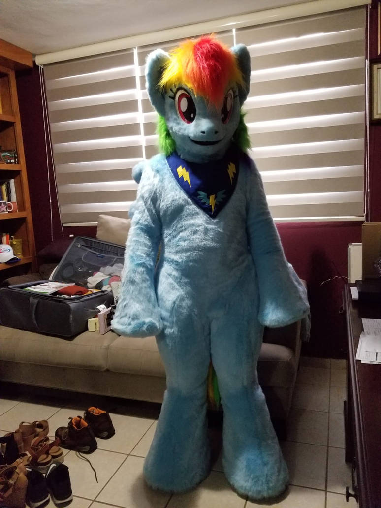 MLP Rainbow Dash Fursuits by OGCHUCK