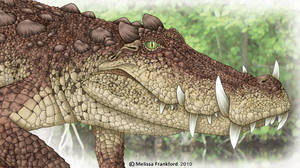 Kaprosuchus by mmfrankford