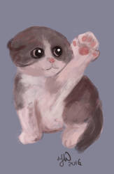 very ugly kitten - speed painting by CiociaMrok