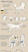 Alphawolf Kiba model sheet by J-C