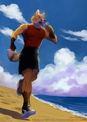 Morning Run by J-C