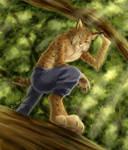 Anthro Lynx by J-C
