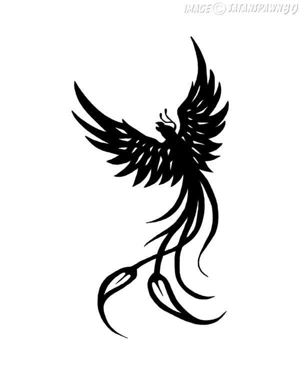Phoenix Tattoo by satanspawn80