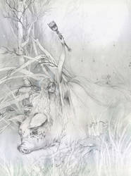 the wild hunt by naomi