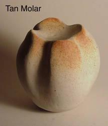 Tan Molar by sbleecker