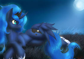 Moon at the Moonshine by Definisher