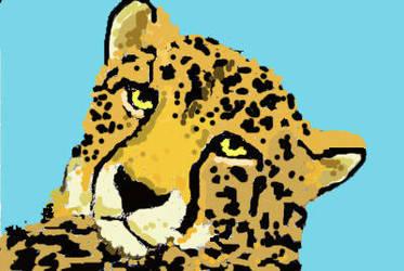 Kittycat by WilliamSnape