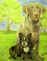 Weimaraner and French Bulldog by MenollySagittaria