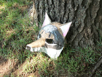 Cyote Mask by FoxboyPrower