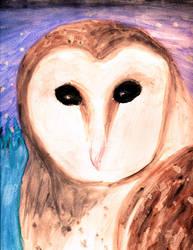 Barn Owl by Sharayab