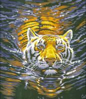 Tiger by koko992001