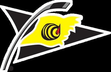 Alternativni logo by jm81hockey