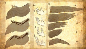 Avian/Harpy references III by Riurekai