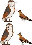 love birds by Riurekai
