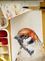 Sparrow bird watercolor postcard by Guindagear