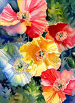 Poppies Group by Shirley77