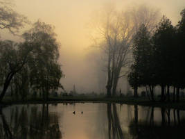 cemetery mist by sphenoid05
