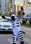 Zebra La Paz by edgeworthy