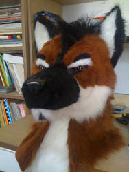 Max the maned wolf by KudlatyLew