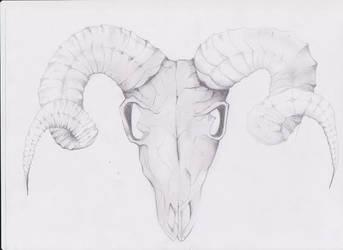 Skullsketch by itildine