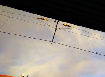 Rainbow  by JazzmineGermany