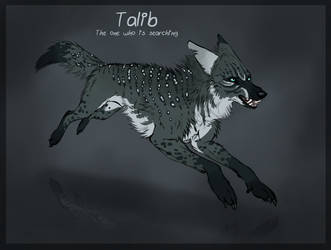 Adoptables - Talib Closed by Anipurk