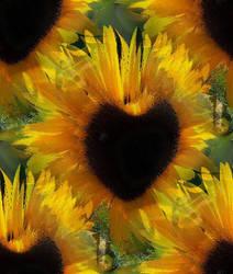 heart sunflower happy birthday by analovecatdog