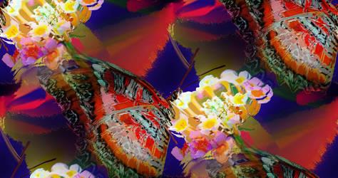 glass butterflies happy birthday  paula by analovecatdog