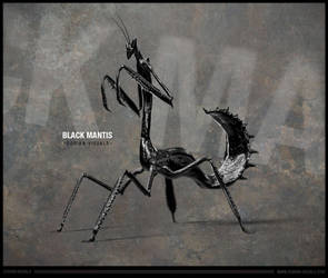 Black Mantis by D0RIAN0