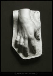 1488 - Leonardo's Hand by D0RIAN0