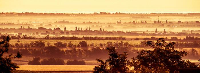 Golden morning by kereszteslp