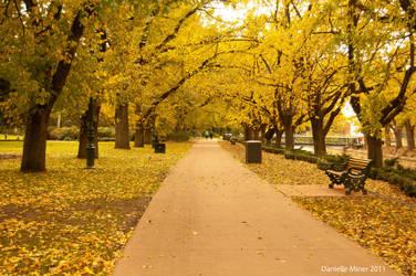Rosalind Park Bendigo by daniellepowell82