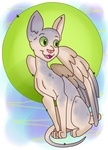 Winged Sphynx Cat Collab by KrazyKari