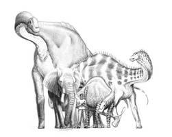 Sauropod Comparison by VitalCreations