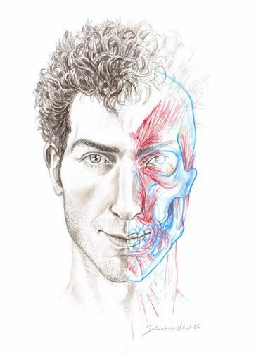 VitalCreations's Profile Picture