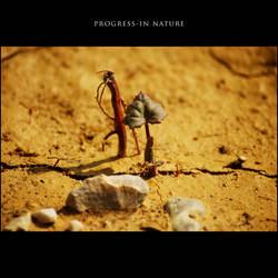 Progress-in Nature VIII by GregorKerle