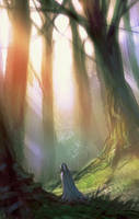 Lost in the forest by elbardo