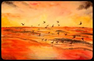 Sunset by vinigal123