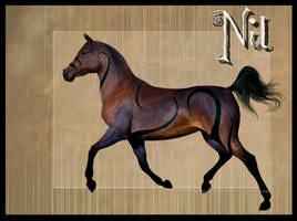 Nil by QueenOfGoldfishes