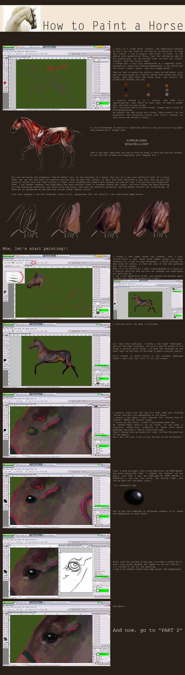 How to paint a Horse-Part1 by QueenOfGoldfishes