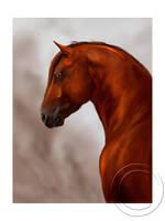 Aurelio, the golden horse by QueenOfGoldfishes