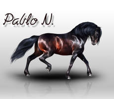 Pablo N. by QueenOfGoldfishes