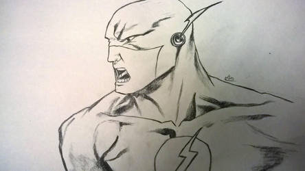 The Angry Flash by PsychoPath10