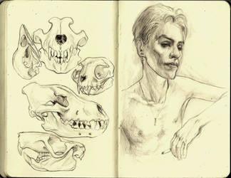 Moleskine by CottonCandyTrip