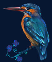 Common Kingfisher by ElizavetaS